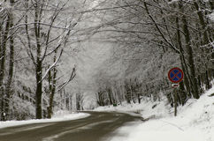 Route de l'hiver Photo libre de droits