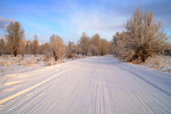 Route de l'hiver Photos libres de droits