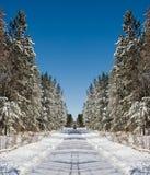 Route de l'hiver images stock