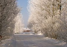 Route de l'hiver Photographie stock