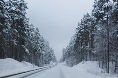 Route de l'hiver Photographie stock libre de droits