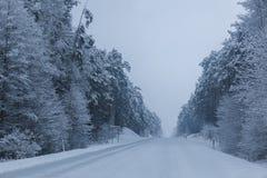 Route de l'hiver Image stock