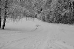 Route de l'hiver Photos stock