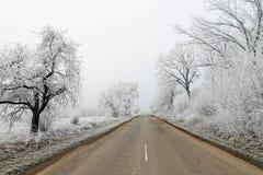 Route de l'hiver Arbres Snow-covered Noël Photos stock