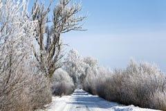 Route de l'hiver avec les arbres givrés et le givre Photographie stock