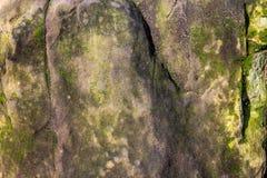 Route de la miette en pierre, envahie avec de la mousse Photos libres de droits