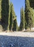 Route de la Toscane Image libre de droits