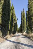 Route de la Toscane Photo stock