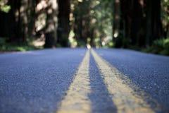 Route de la vie Photos libres de droits