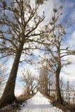Route de Milou, hiver Photos stock
