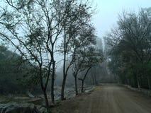 Route de montagne à côté de rivière et d'arbres photographie stock libre de droits