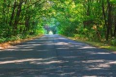 Route de montagne à l'été photos stock
