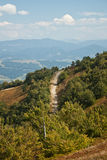 Route de montagne photos libres de droits