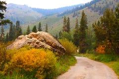 Route de montagne au roi minéral, parc national de séquoia images libres de droits