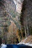 Route de montagne d'automne image stock