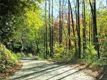 Route de montagne d'enroulement en automne image libre de droits