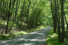 Route de montagne d'ombre Images libres de droits