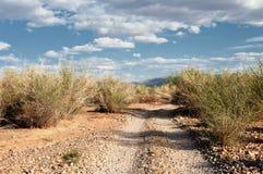 Route de montagne de désert en Mongolie images libres de droits