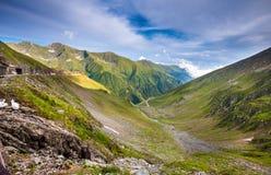 Route de montagne de Transfagarasan avec les fleurs sauvages de Roumanie Image libre de droits
