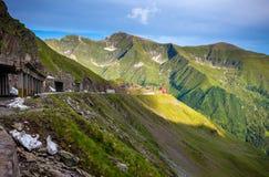 Route de montagne de Transfagarasan avec les fleurs sauvages de Roumanie Photo stock