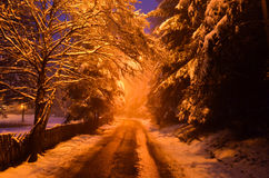 Route de montagne le long de la forêt dans la saison d'hiver Photographie stock libre de droits