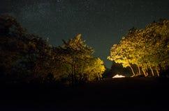 Route de montagne par la forêt une nuit de pleine lune Paysage scénique de nuit de ciel bleu-foncé avec la lune l'azerbaïdjan Lon Images stock