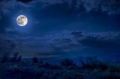 Route de montagne par la forêt une nuit de pleine lune Paysage scénique de nuit de ciel bleu-foncé avec la lune Photo stock