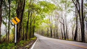 Route de nature Photo stock