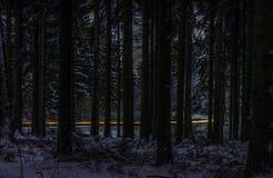 Route de nuit par la forêt Photographie stock