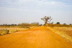 Route de Rred à Samba Dia Image stock