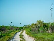 Route de Sandy menant par un isalnd tropical photographie stock