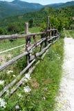 Route de source Images stock