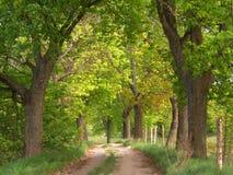Route de source Images libres de droits