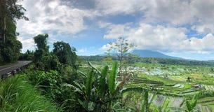 Route de terrasse de riz photographie stock