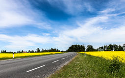 Route de terres cultivables photographie stock