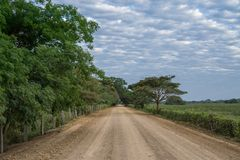 Route de Transpantaneira dans Panantal Photos libres de droits