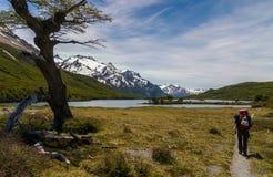 Route de trekking à Fitz Roy Photo stock
