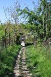 Route de village Photo stock