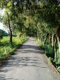 Route de village d'image Photos libres de droits