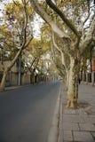 Route de Yoyang Image stock