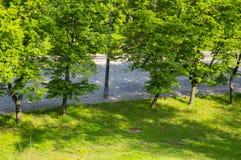 Route des pavés sur un fond d'herbe verte et d'arbres photo stock