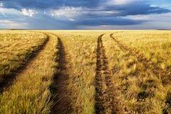 Route deux rurale de divergence en steppes image stock