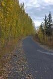 Route disparaissant dans le paysage d'automne Images stock