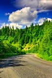 Route door de bergen aan het pijnboombos op een de zomereveni Stock Foto's