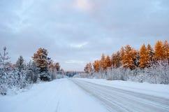 Route du nord d'hiver allumée par les rayons du coucher de soleil photo libre de droits