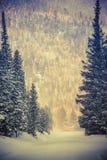 Route du pays des merveilles d'hiver photos stock