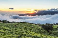 Route du Plaine des Sables île de la Réunion stock photos