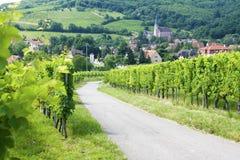 Route du vine, de Elzas, Stock Afbeeldingen