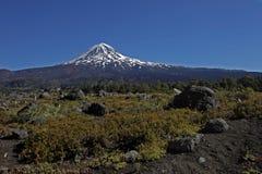 Route en Argentine Photographie stock libre de droits