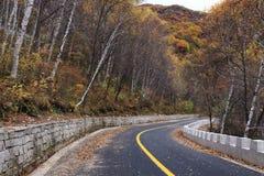 Route en automne Image stock